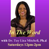 Dr_toy_lisa_mitchell